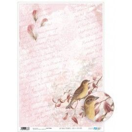 Papel cartonaje. PFY. Romantic Birds & Feathers. 32 x 48,3 cm